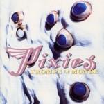 pixies_trompe